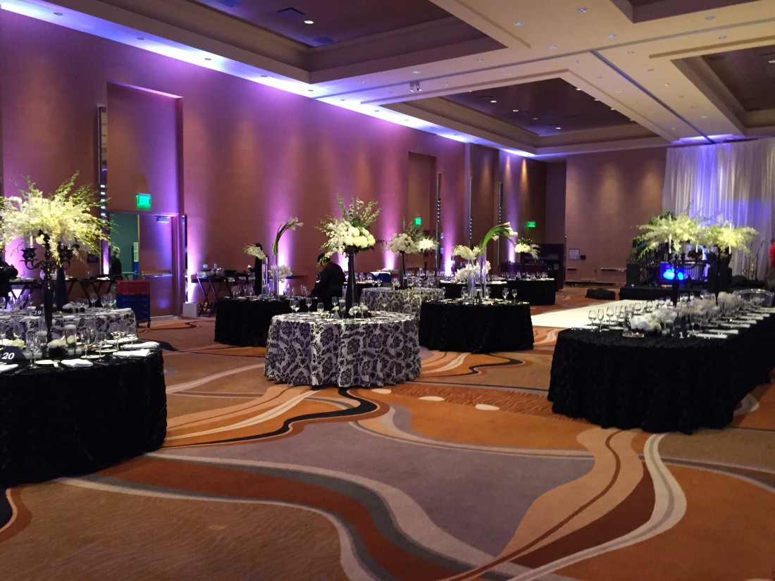 About Affordable Party Lighting - Event Lighting Company Oakland County - IMG_0117